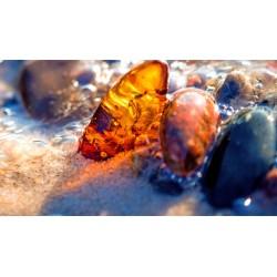 1000 grams of amber